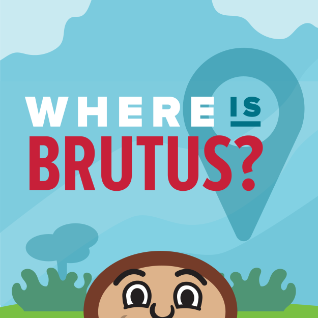 where-is-brutus